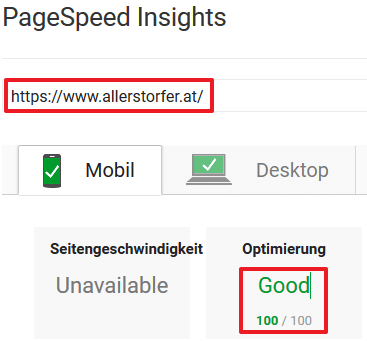 Google PageSpeed Insight 100/100